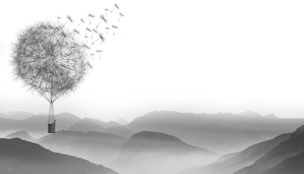 dandelion, wind, flying